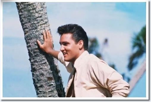 Elvis in Florida